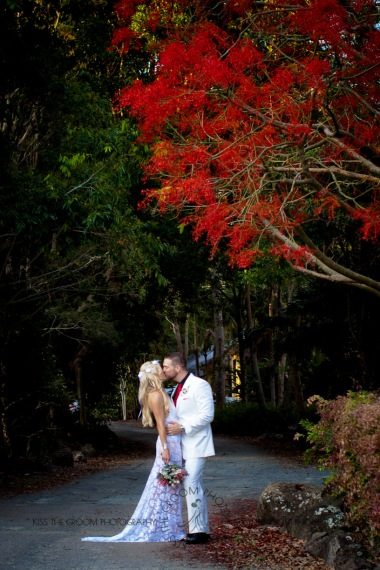 cedar creek lodges trina steve wedding kiss the groom mt tamborine wedding photographer-0645